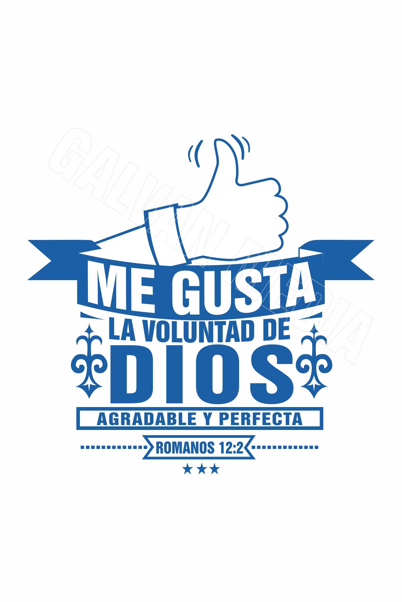 Me Gusta La Voluntad De Dios Galvan Media